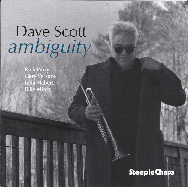 DAVE SCOTT - Ambiguity cover