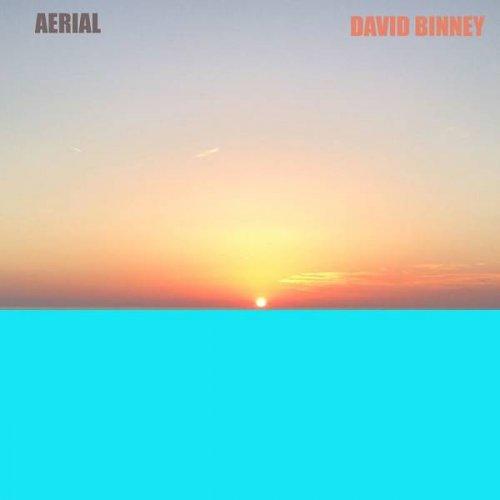 DAVID BINNEY - Aerial cover