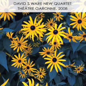 DAVID S. WARE - Théâtre Garonne, 2008 cover