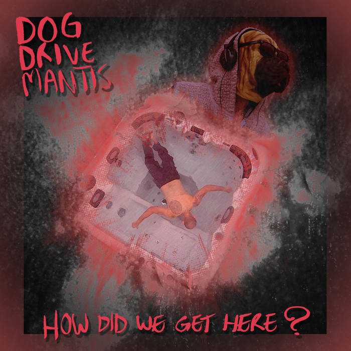 DOG DRIVE MANTIS - How Did We Get Here? cover