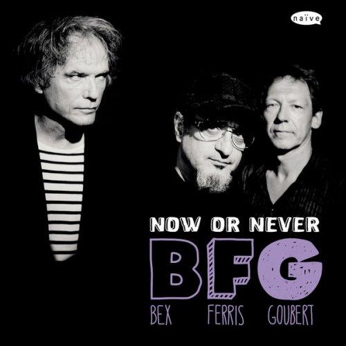 EMMANUEL BEX - Emmanuel Bex, Glenn Ferris, Simon Goubert : BFG - Now Or Never cover
