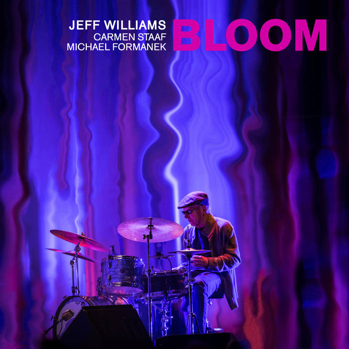 JEFF WILLIAMS - Bloom cover