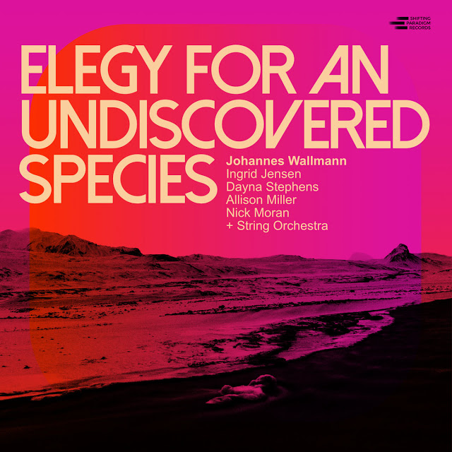 JOHANNES WALLMANN - Elegy for an Undiscovered Species cover