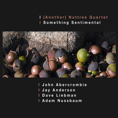 JOHN ABERCROMBIE - (Another) Nuttree Quartet: Something Sentimental cover
