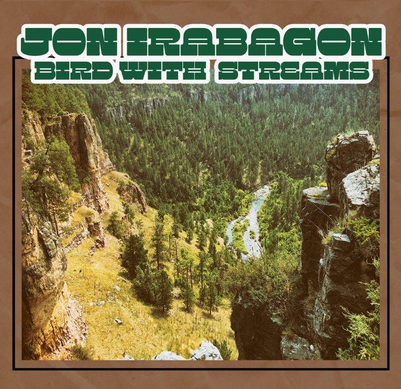 JON IRABAGON - Bird with Streams cover