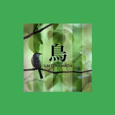 JUN FUKAMACHI - Tori cover