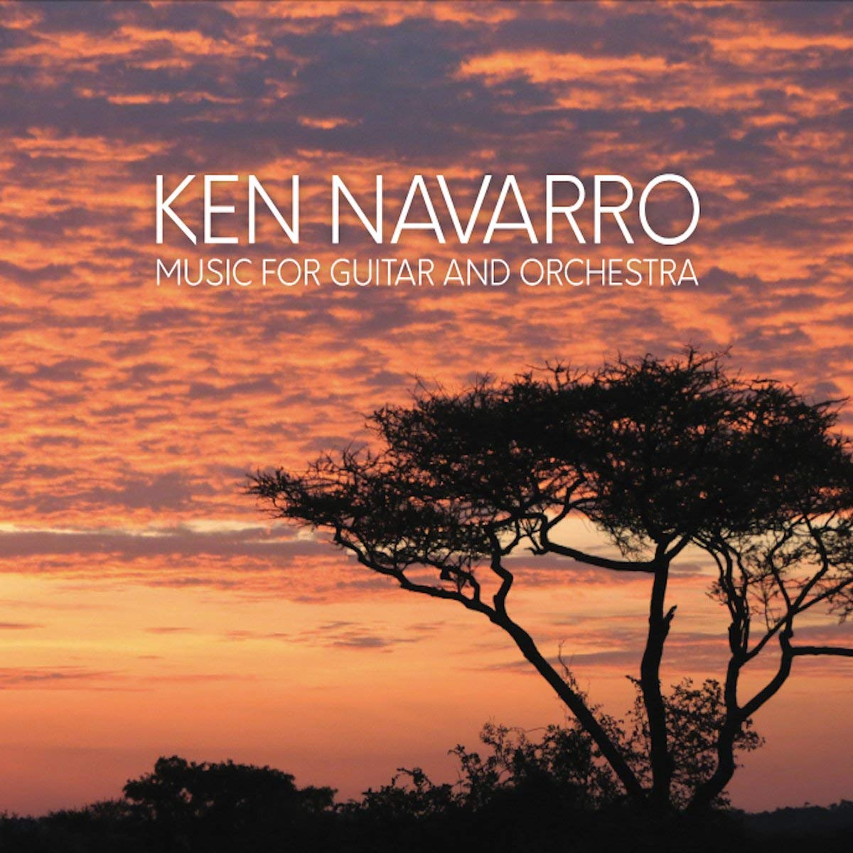 KEN NAVARRO - Music For Guitar And Orchestra cover