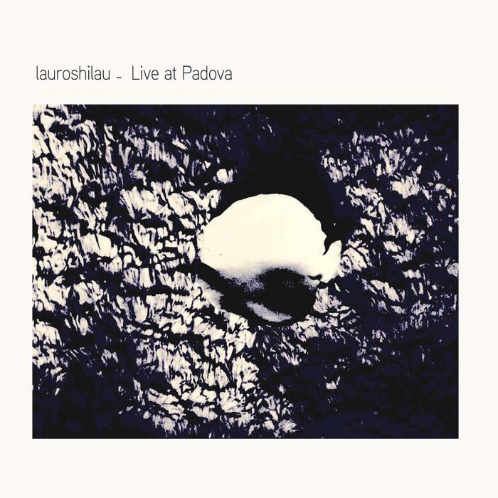 LAUROSHILAU - Live at Padova cover
