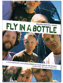 MEDESKI MARTIN AND WOOD - Fly In A Bottle cover