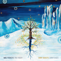 MIKE PARKER - Mike Parkers Trio Theory : Shiny Objects, Dark Places cover