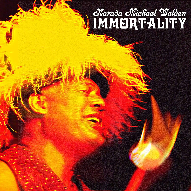 NARADA MICHAEL WALDEN - Immortality cover