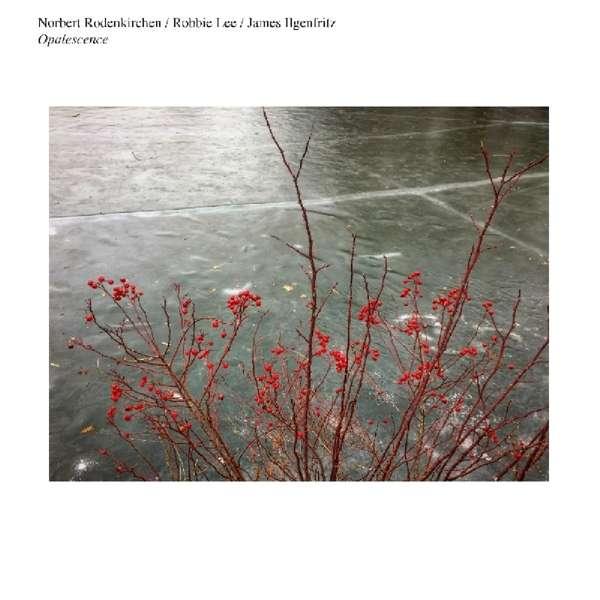 NORBERT RODENKIRCHEN - Norbert Rodenkirchen / Robbie Lee / James Ilgenfritz : Opalescence cover