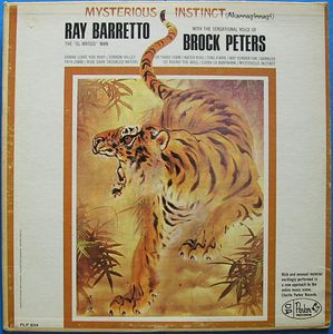 RAY BARRETTO - Mysterious Instinct cover