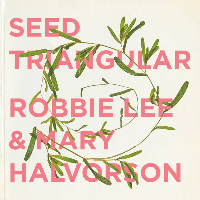 ROBBIE LEE - Robbie Lee and Mary Halvorson : Seed Triangular cover