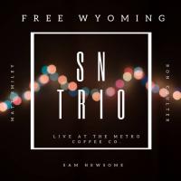 SAM NEWSOME - SN Trio : Free Wyoming cover
