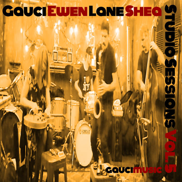 STEPHEN GAUCI - Stephen Gauci, Sandy Ewen, Adam Lane, Kevin Shea : Studio Sessions Vol. 5 cover