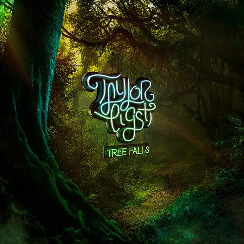 TAYLOR EIGSTI - Tree Falls cover