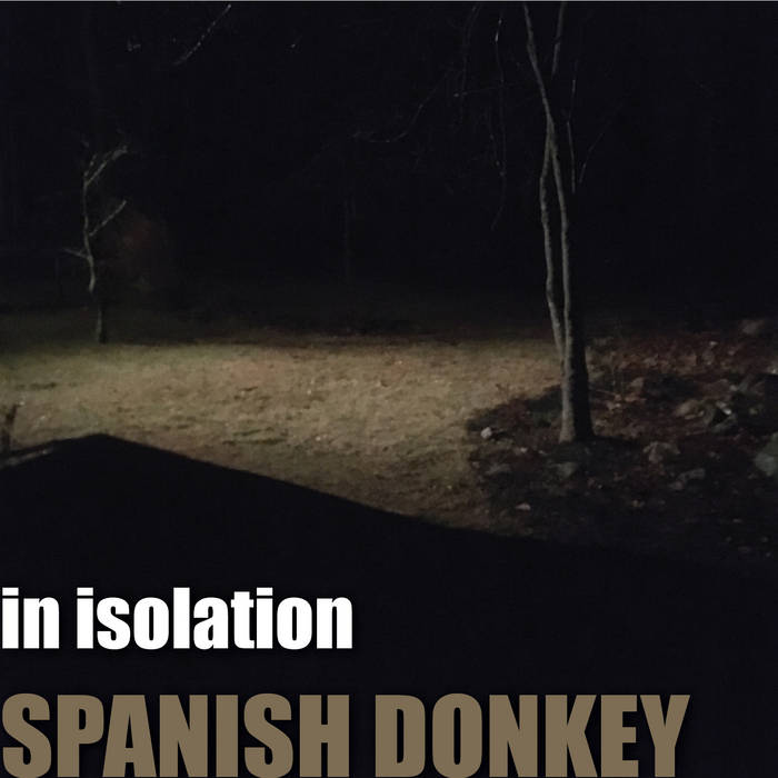 THE SPANISH DONKEY - In Isolation cover