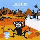 11 ACORN LANE Painting Coconuts album cover