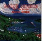 AKIRA JIMBO Beach Picnics Vol. 2 album cover