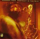 ANDREW LAMB Portrait In The Mist album cover