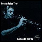 AVRAM FEFER Avram Fefer Trio : Calling All Spirits album cover