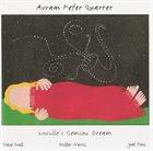 AVRAM FEFER Lucille's Gemini Dream album cover