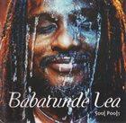 BABATUNDE LEA Soul Pools album cover