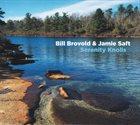 BILL BROVOLD Bill Brovold & Jamie Saft : Serenity Knolls album cover