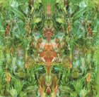BILL LASWELL Emerald Aether: Shape Shifting album cover