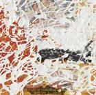 BILL LASWELL Permutation album cover
