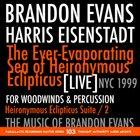 BRANDON EVANS The Ever-Evaporating Sea Of Heironymous Eclipticus album cover