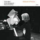 CARLA BLEY Carla Bley/Andy Sheppard/Steve Swallow : Andando el Tiempo album cover