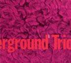 CHICAGO UNDERGROUND DUO / TRIO /  QUARTET - CHICAGO / LONDON UNDERGROUND Chicago Underground Trio : Slon album cover