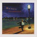 CHRIS SAUNDERS BAND / CHRIS SAUNDERS BIG SKIN Big Skin : Sandancer album cover