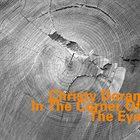 CHRISTY DORAN In The Corner Of The Eye album cover