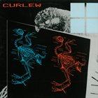 CURLEW Curlew album cover