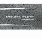 DANIEL LEVIN Daniel Levin / Rob Brown : Divergent Paths album cover