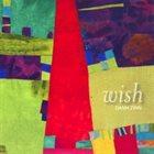 DANN ZINN Wish album cover