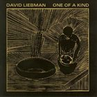 DAVE LIEBMAN One Of A Kind album cover