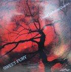 DAVE LIEBMAN Sweet Fury album cover