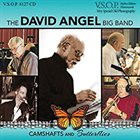DAVID ANGEL The David Angel Big Band : Camshafts And Butterflies album cover