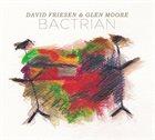 DAVID FRIESEN David Friesen and Glen Moore : Bactrian album cover