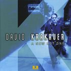 DAVID KRAKAUER A New Hot One album cover