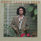 DAVID SANBORN Promise Me The Moon album cover