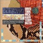 DAVID TORN Polytown album cover