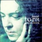 DAVID TORN The David Torn Collection album cover