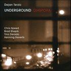 DEJAN TERZIĆ Diaspora album cover