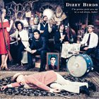 DIZZY BIRDS I'm gonna pick you up in a red dress, baby! album cover