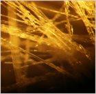 DOMINIC LASH Lash, Farmer, Hughes, Houben, Susam : Droplets album cover